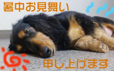 夏バテ(?)りっくん